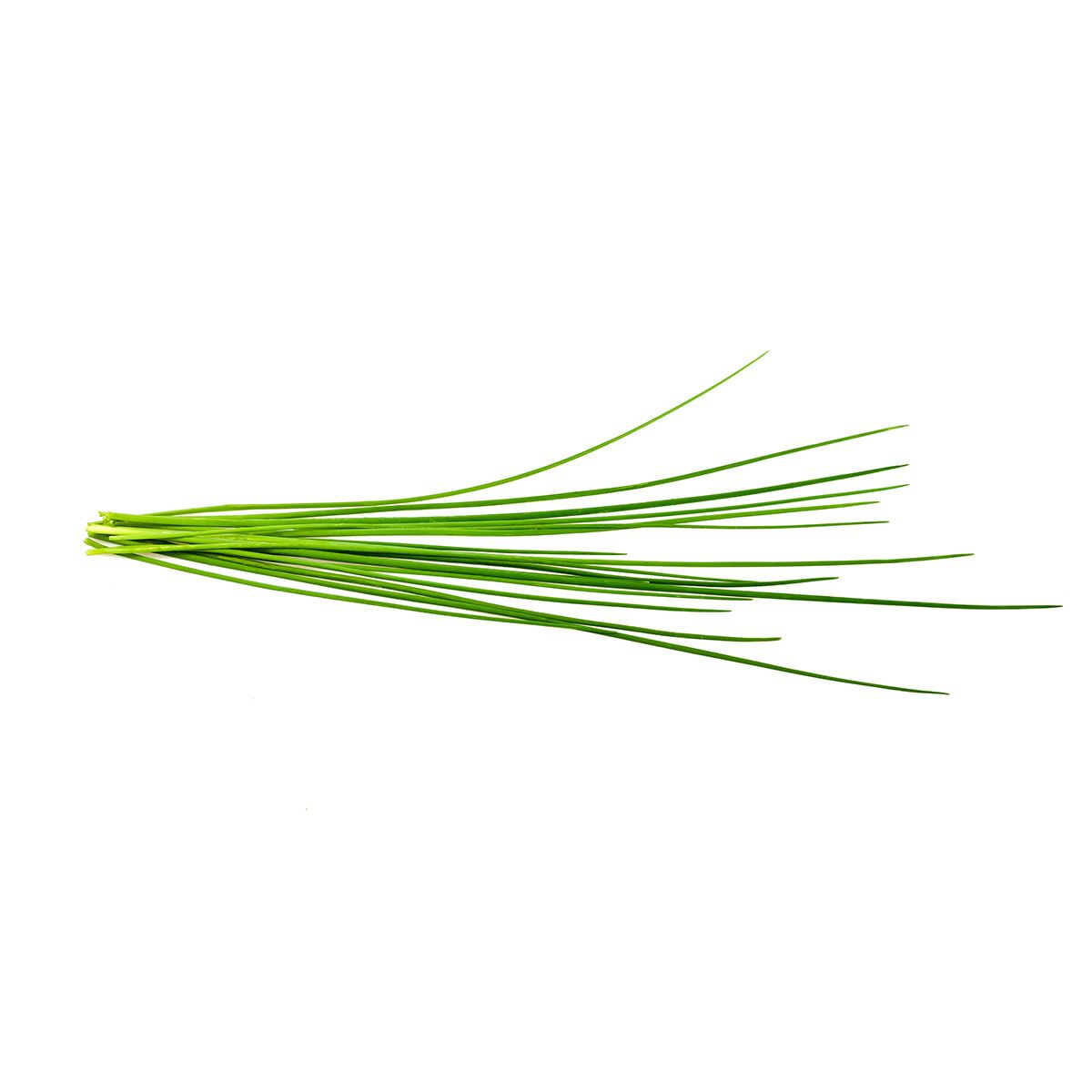 Chives_plant_1200x1200_preview.jpg
